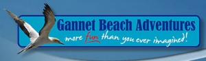 Baypex Gannet beach Adventures logo