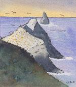 Baypex gannet maxi